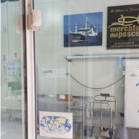 7-sistema-antifurto-volumetrico-doppia-tecnologia-antiaccecamento-mercato-del-pesche-grancia